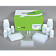 AccuPrep® Plasmid Extraction Kit, 2 x 96-well plate