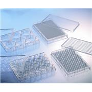 Image of 384 Well Poly-D-Lysine CELLCOAT® Plates