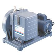 DuoSeal Unmounted Pump
