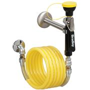 Image of Wall-Mounted Hose Spray