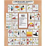 Image of Vinyl Laboratory Safety and Technique Charts
