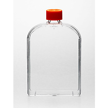 Corning® Cell Culture Flask with Vent Cap