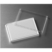 Corning® Low Volume 384 Well White Flat Bottom Polystyrene TC-Treated Microplates