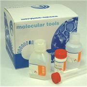 Image of Colony PCR kit-50 Reactions