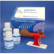 Protein G MagneZoom™ (Paramagnetic Beads) Kit, 1 mL