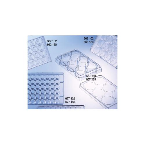 Greiner Bio-One 657165 CELLSTAR Cell Culture Multiwell Plate with Lid Flat Bottom Chimney Style TC Treated Pack of 120 Sterile 6 Well
