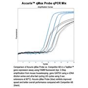 Accuris™ qMax Probe qPCR Mix