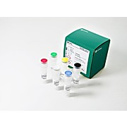 illustra Single Cell GenomiPhi DNA Amplification Kit