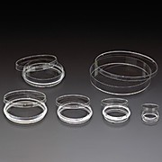 Tissue Culture Treated Dishes, 150mm x 20mm, Sterile