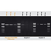 ROCHE Pwo SuperYield DNA Polymerase