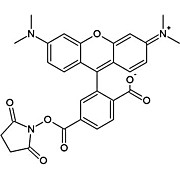 Image of HOOK™ (5/6) TAMRA-SE (Rhodamine) Labeling Kit