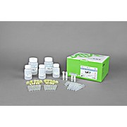 AccuPrep® Plant DNA Extraction Kit