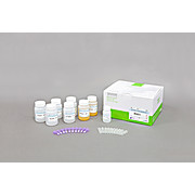 AccuPrep® PCR/Gel Purification Kit